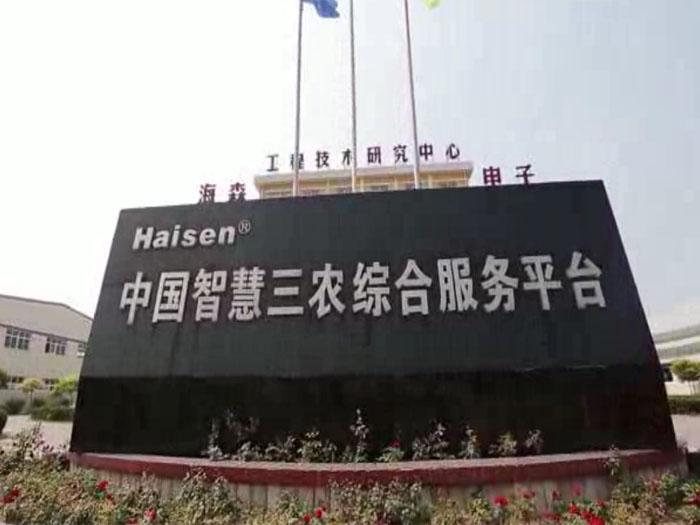 齐英杰老师为新三板上市公司海森电子策划命名